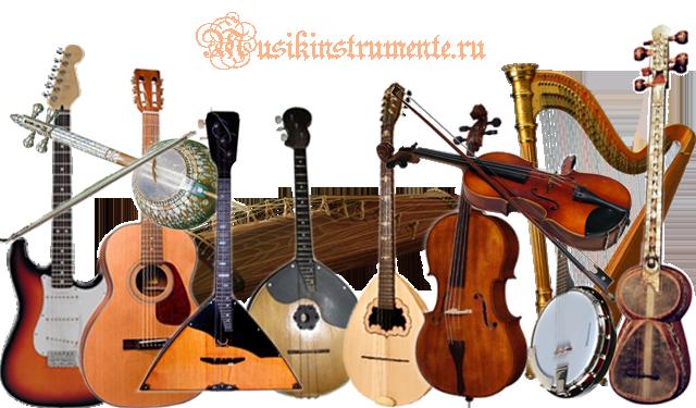 stringed-instruments